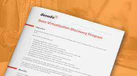 Data Virtualization Discovery Program