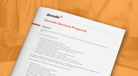 Denodo Services Programs