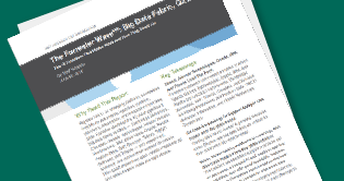 Forrester Wave Big Data Fabric 2018